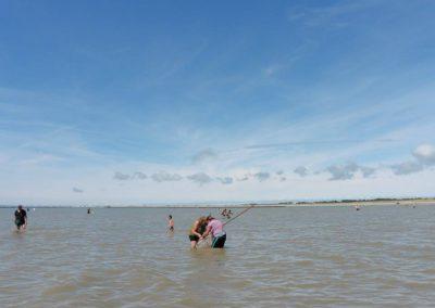 garnalen-vissen-aan-de-franse-kust