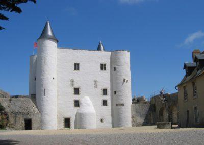 kastelen in frankrijk
