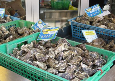 verse oesters in frankrijk