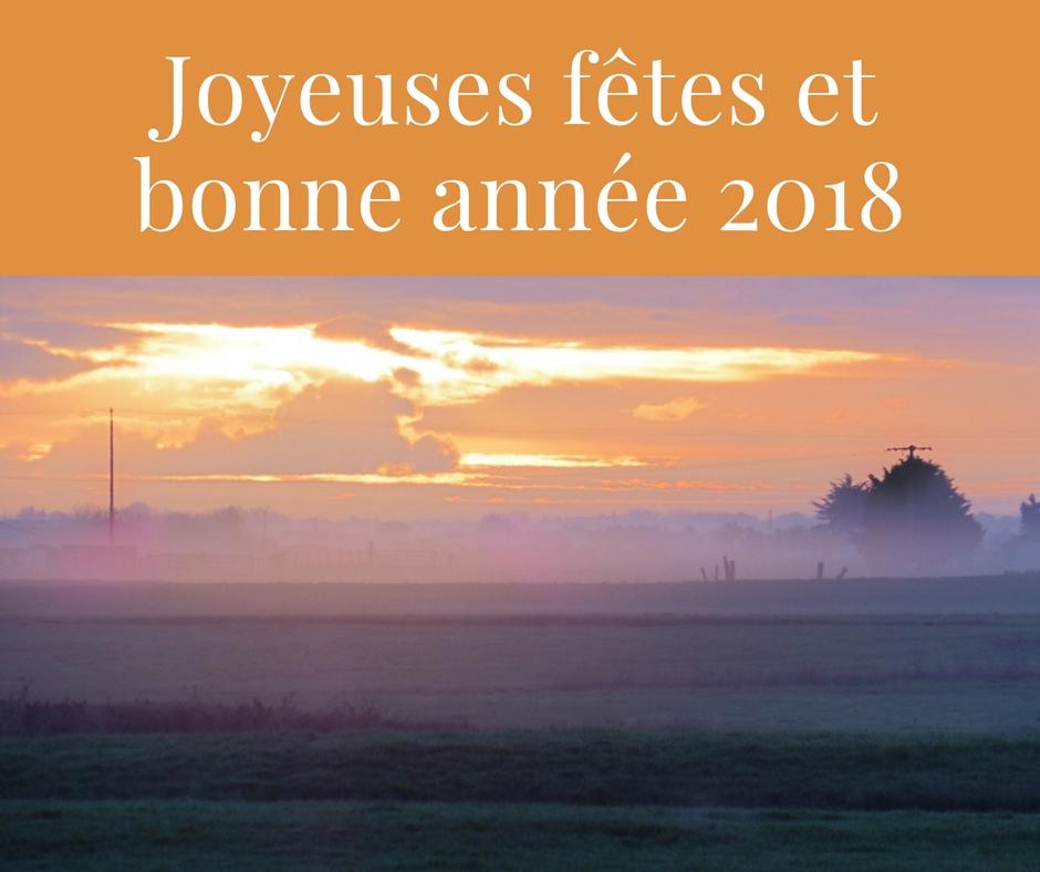 Joyeuses fêtes et bonne année 2018