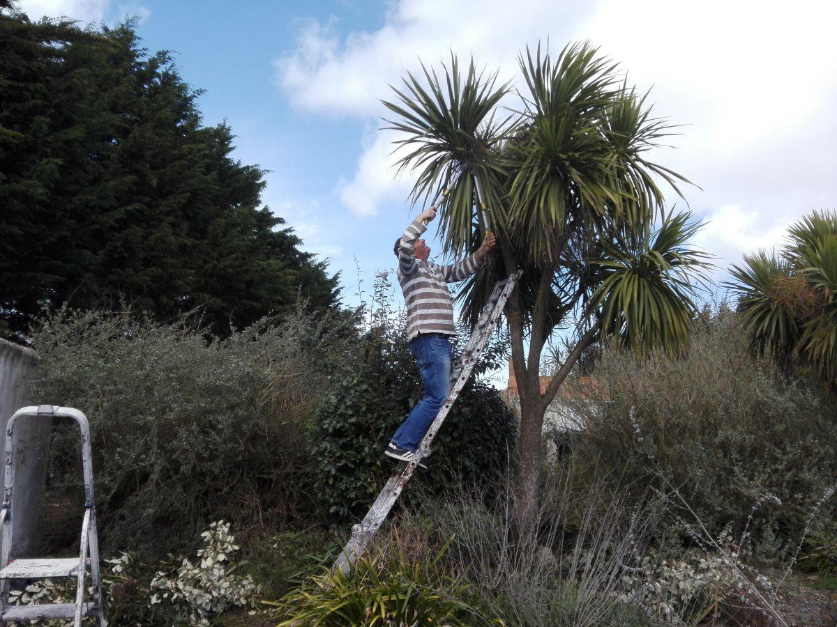 De tuin wordt bijgewerkt in Frankrijk