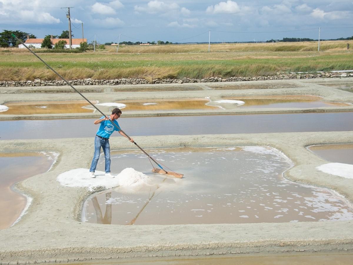 Handmatige zoutwinning in Frankrijk