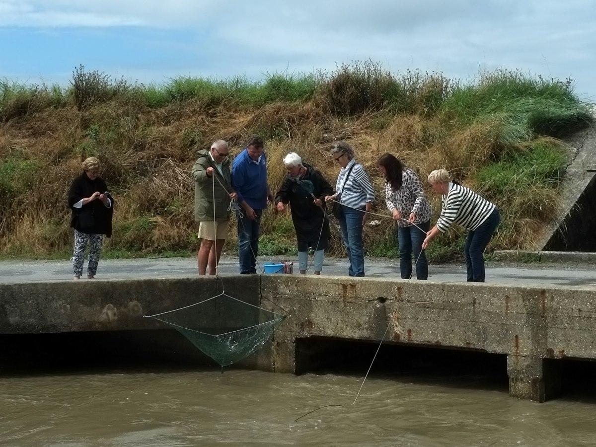Vissen met een kruisnet in Frankrijk