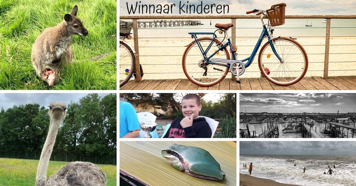Fotowedstrijd kinderen 2019 NL collage